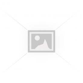 Elit EW14 8.5X19 5X120 ET30 PLP 72,6